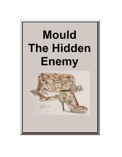 Mould The Hidden Enemy